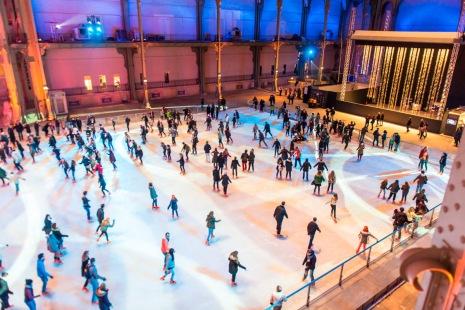 grand palais ice1
